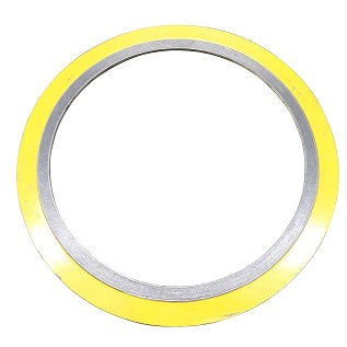 CG Type Spiral Wound Gasket with Outer Ring
