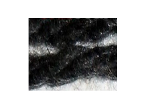 Spun Carbonized Fiber Yarn